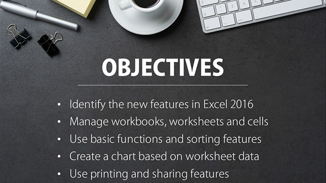 Microsoft Excel 2016: Introduction Preview 1