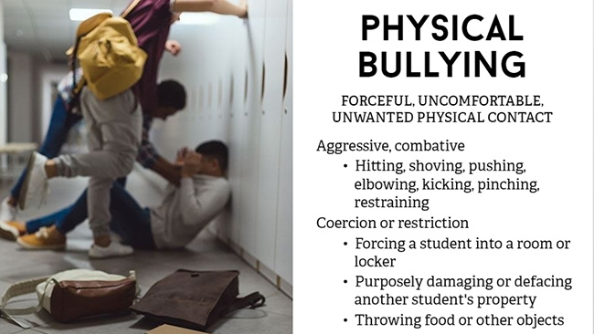 Bullying Prevention for School Personnel Preview 1